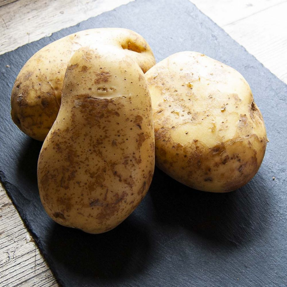 English Baking Potatoes (Each)